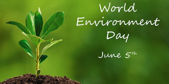Celebrating World Environment Day at AUS Campus